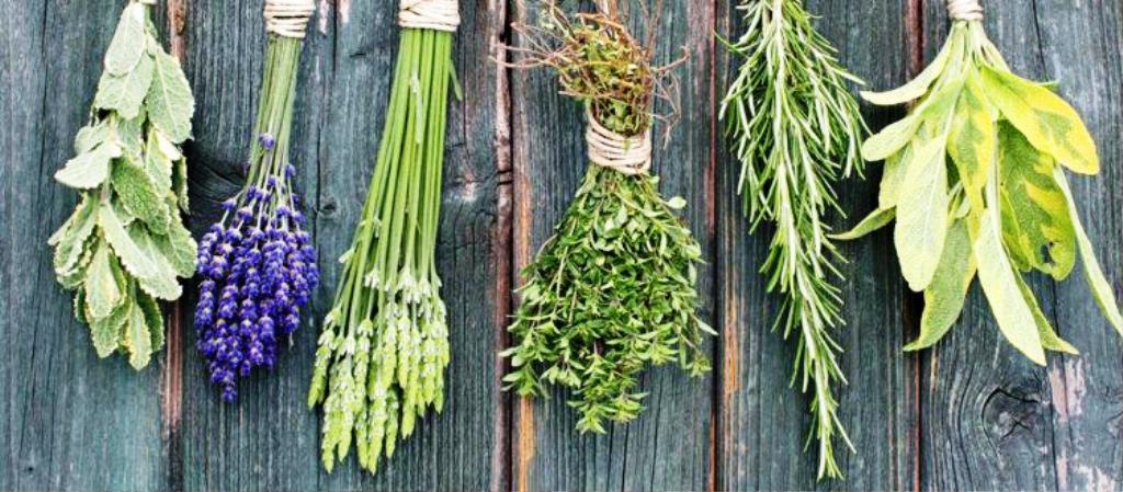 Erbe aromatiche, spezie e peperoncino